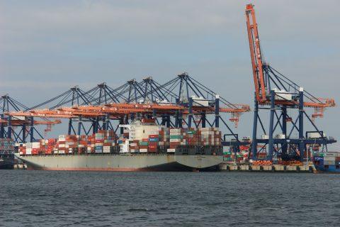 Overslag Maasvlakte, containers, haven Rotterdam, foto: @Jan van der Vaart