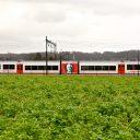 Veolia, Limburg