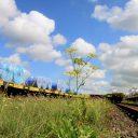 Spoorlijn bij Tata Steel in IJmuiden