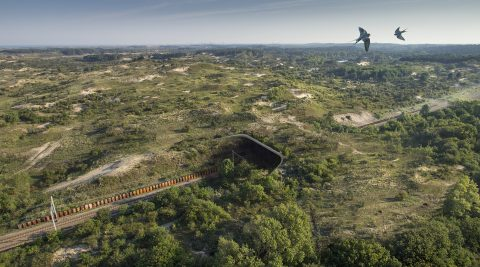 Ecoduct Duinpoort, foto: ProRail