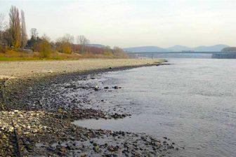 Laagwater Rijn, bron: Wikimedia