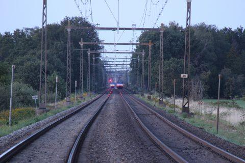 Treinen staan stil na het ongeluk waarbij de koeien werden aangereden, foto: News United / Jan Willem Klein Horstman