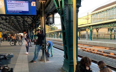 Reizigers gestrand in Den Bosch